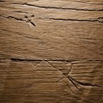 2512 - OLD NATURE - Oak smoked - Real wood veneer